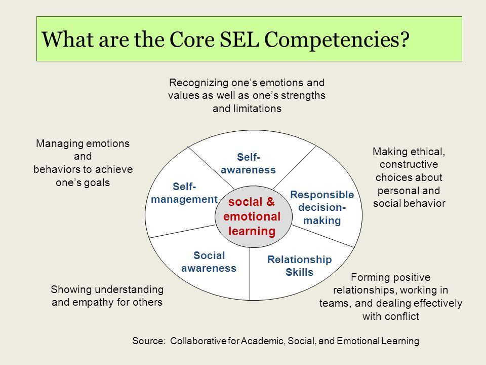 What are the Core SEL Competencies