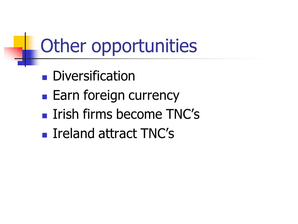 Other opportunities Diversification Earn foreign currency