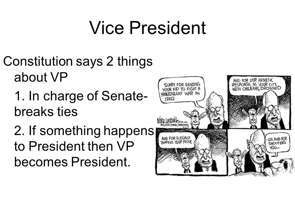 Vice President Constitution says 2 things about VP