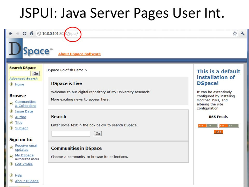 JSPUI: Java Server Pages User Int.