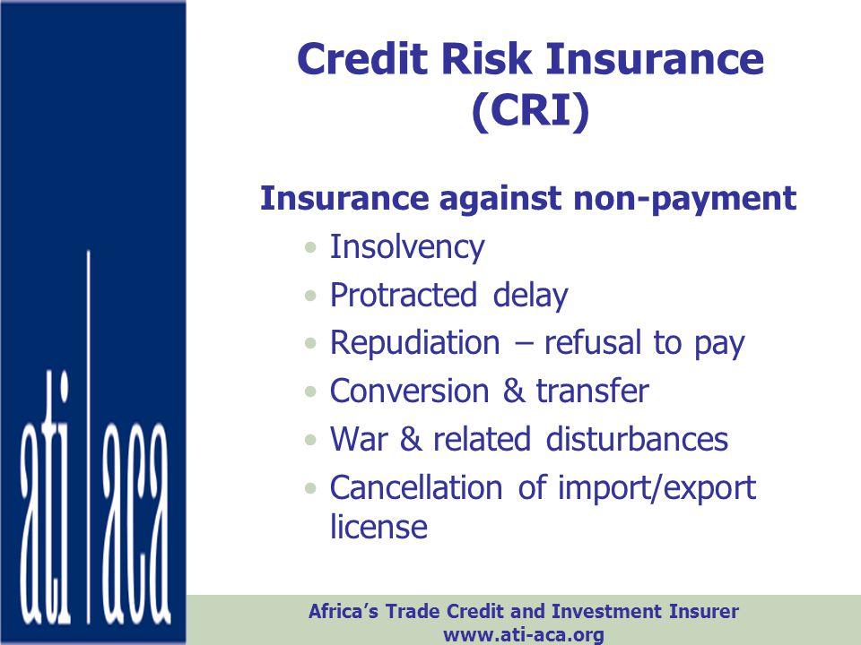 Credit Risk Insurance (CRI)