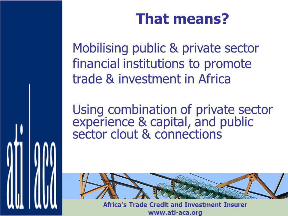 That means Mobilising public & private sector financial institutions to promote trade & investment in Africa.