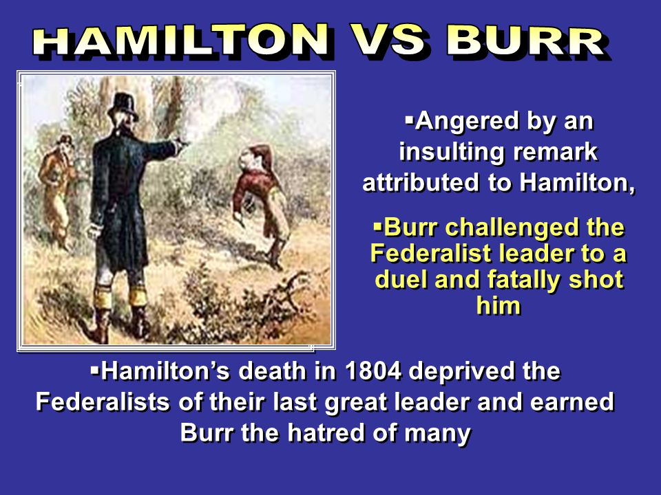Angered by an insulting remark attributed to Hamilton,