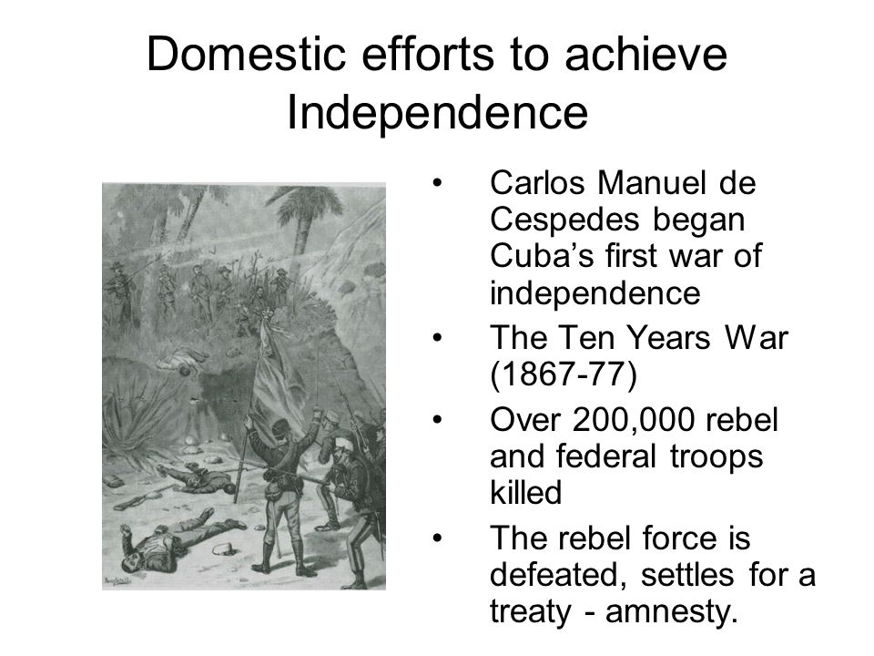 Domestic efforts to achieve Independence