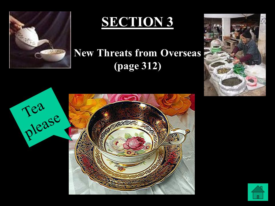 SECTION 3 New Threats from Overseas (page 312)