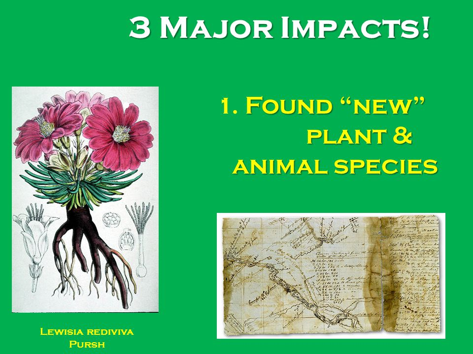 3 Major Impacts! 1. Found new plant & animal species