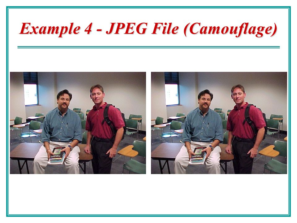Example 4 - JPEG File (Camouflage)