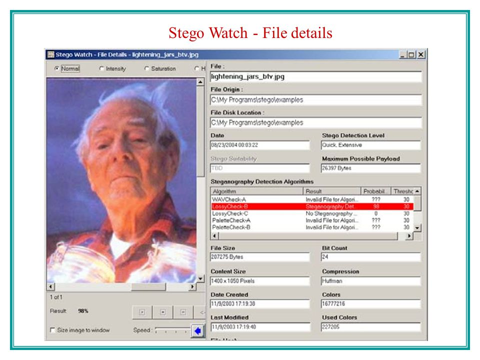 Stego Watch - File details
