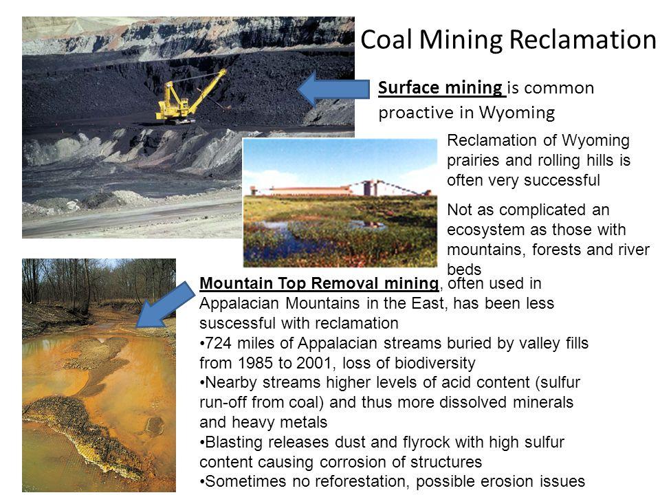 Coal Mining Reclamation