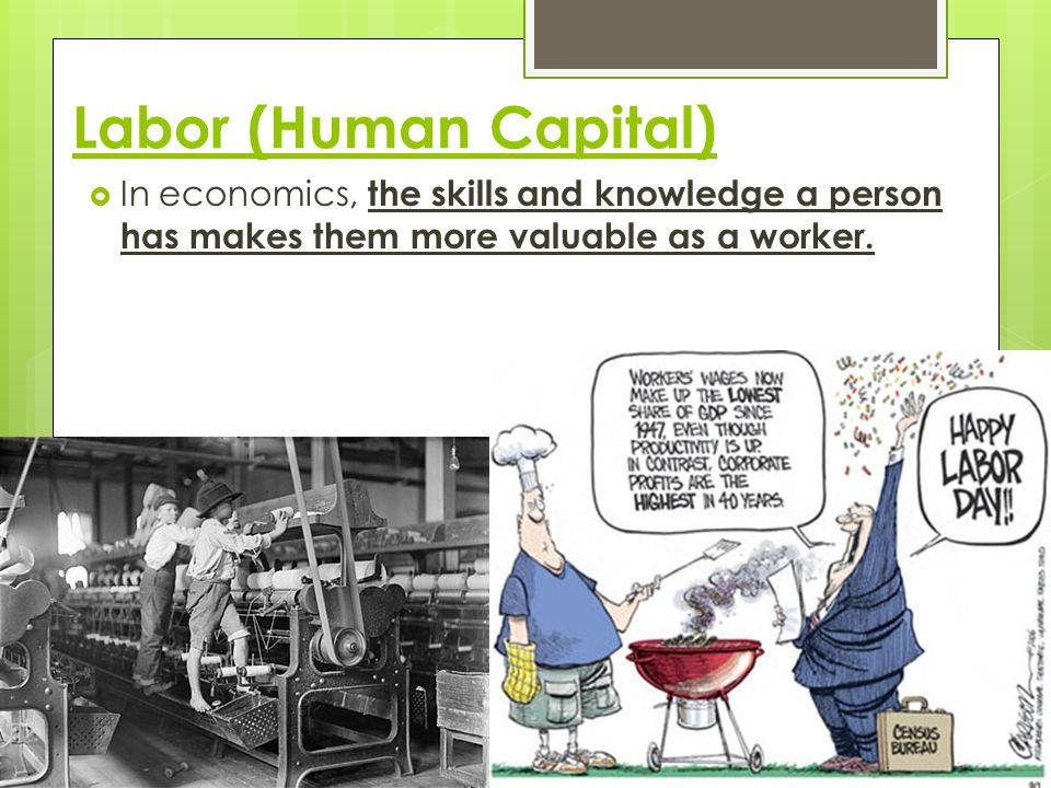 Labor (Human Capital) In economics, the skills and knowledge a person has makes them more valuable as a worker.