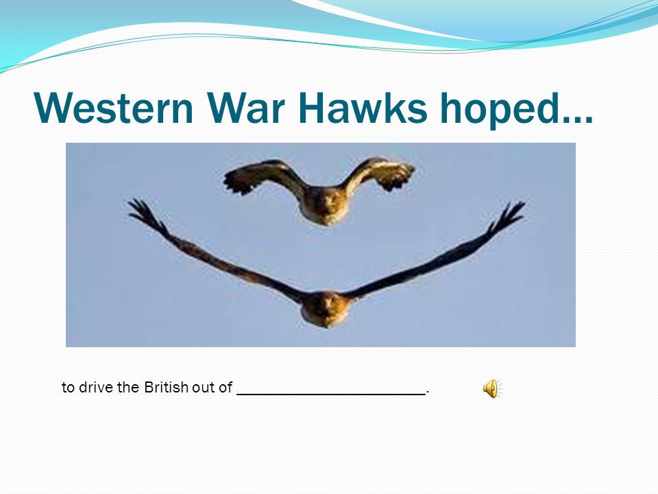 Western War Hawks hoped…