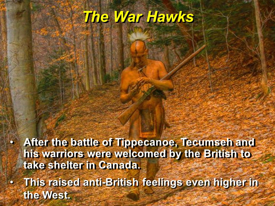 The War Hawks After the battle of Tippecanoe, Tecumseh and his warriors were welcomed by the British to take shelter in Canada.