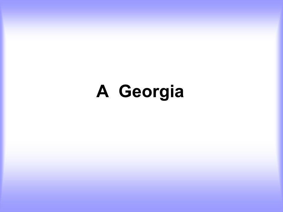 A Georgia