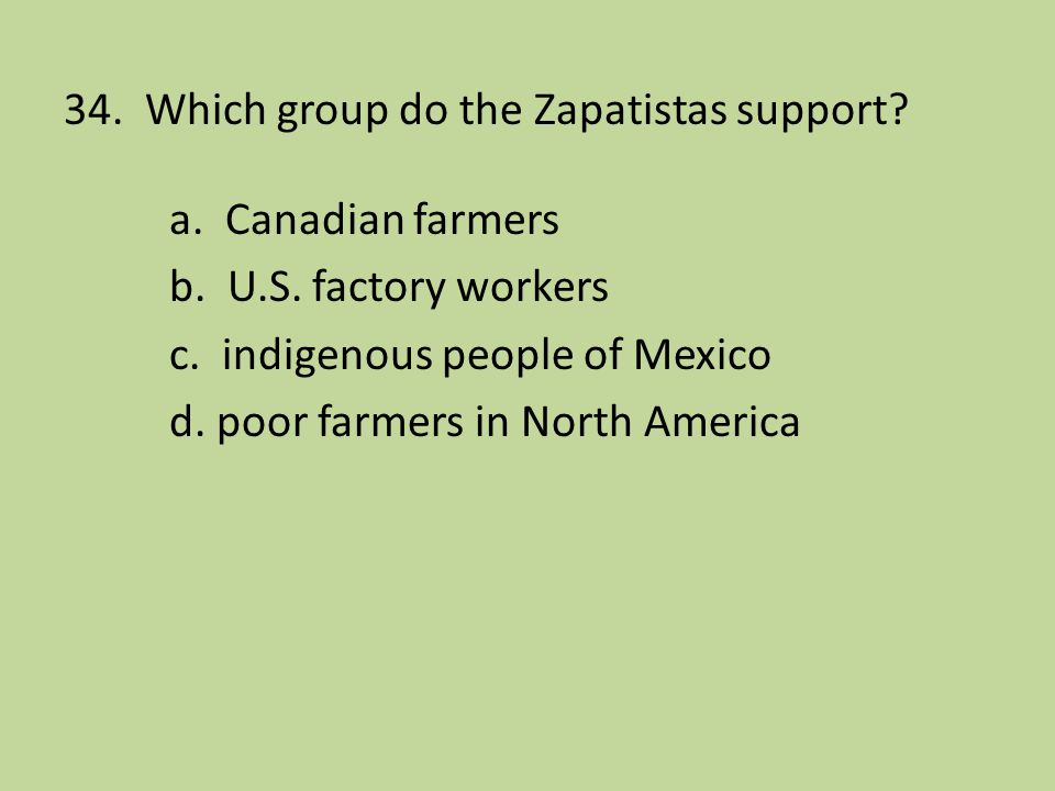 34. Which group do the Zapatistas support