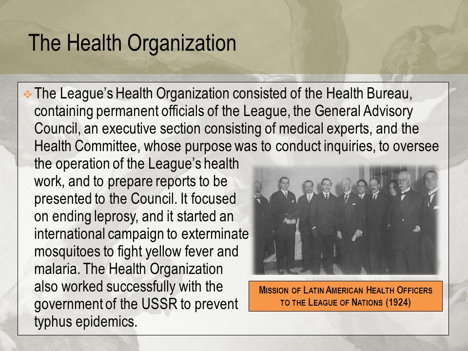 The Health Organization