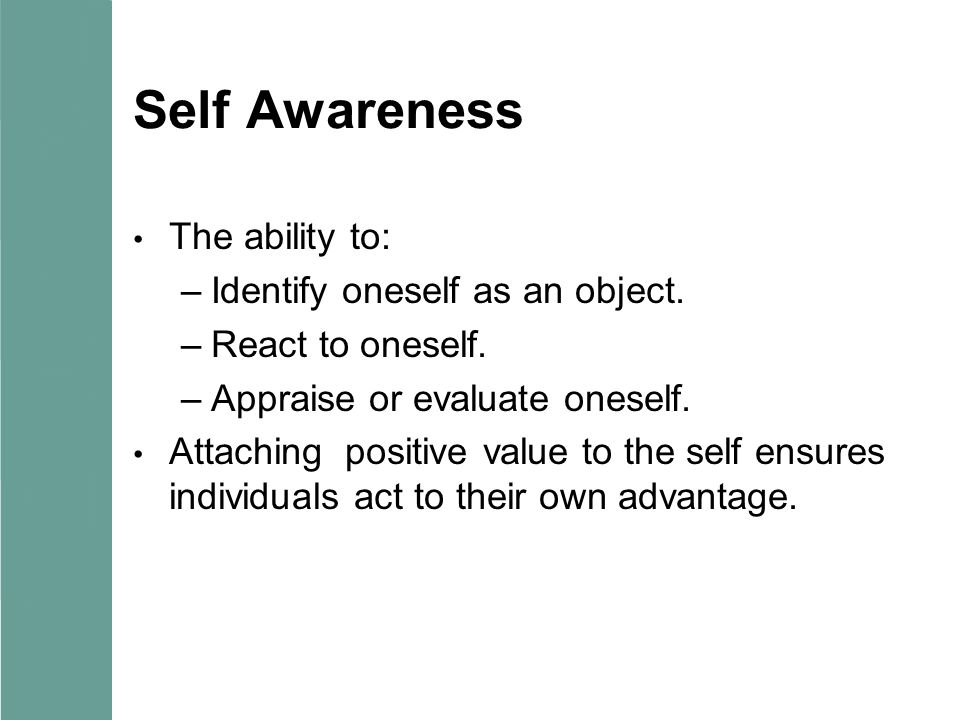 Self Awareness The ability to: Identify oneself as an object.