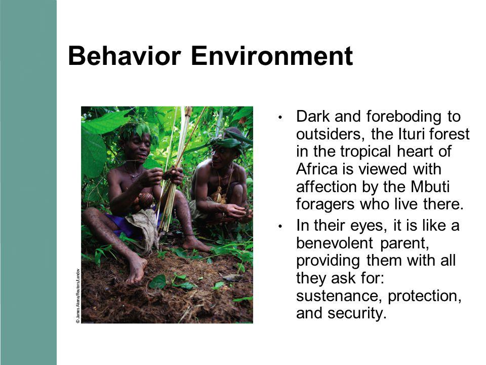 Behavior Environment