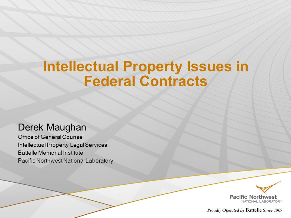 Intellectual Property Issues in Federal Contracts