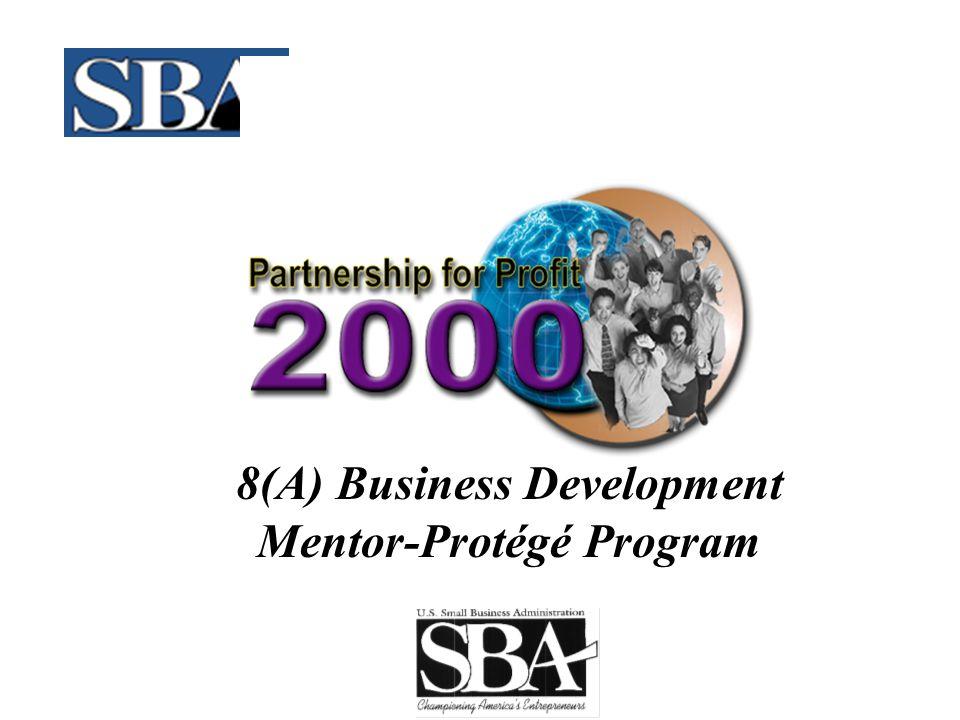 8(A) Business Development Mentor-Protégé Program