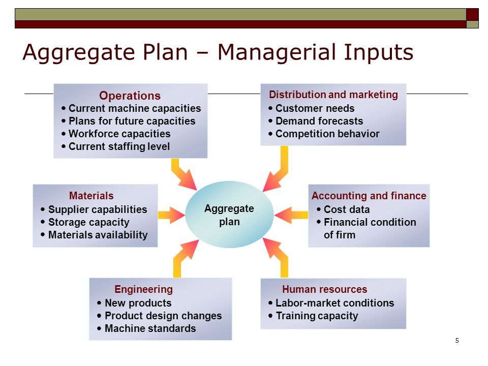 Aggregate Plan – Managerial Inputs