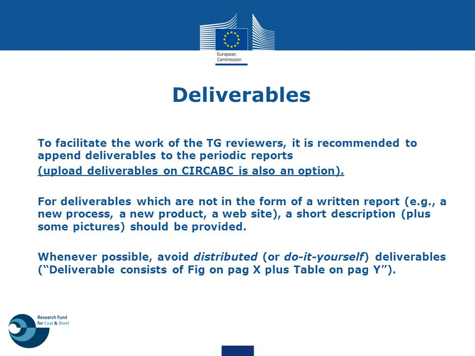 Deliverables To facilitate the work of the TG reviewers, it is recommended to append deliverables to the periodic reports.