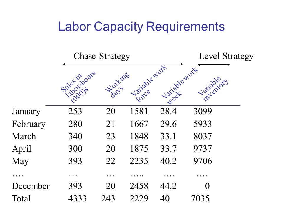 Labor Capacity Requirements