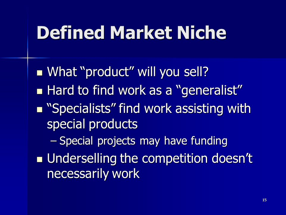 Defined Market Niche What product will you sell