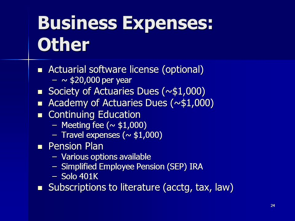 Business Expenses: Other