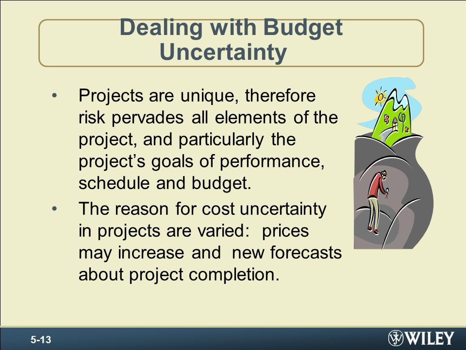 Dealing with Budget Uncertainty