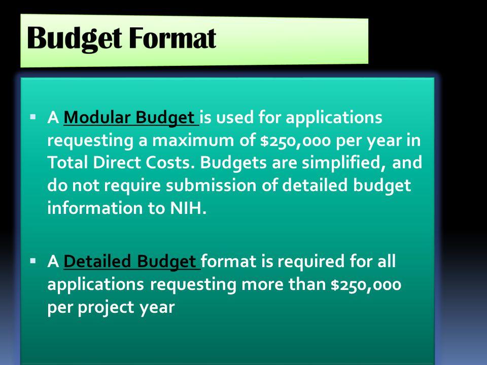 Budget Format