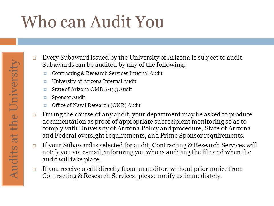 Audits at the University