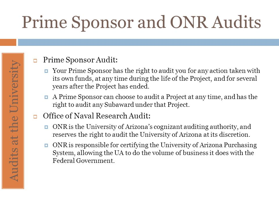 Prime Sponsor and ONR Audits