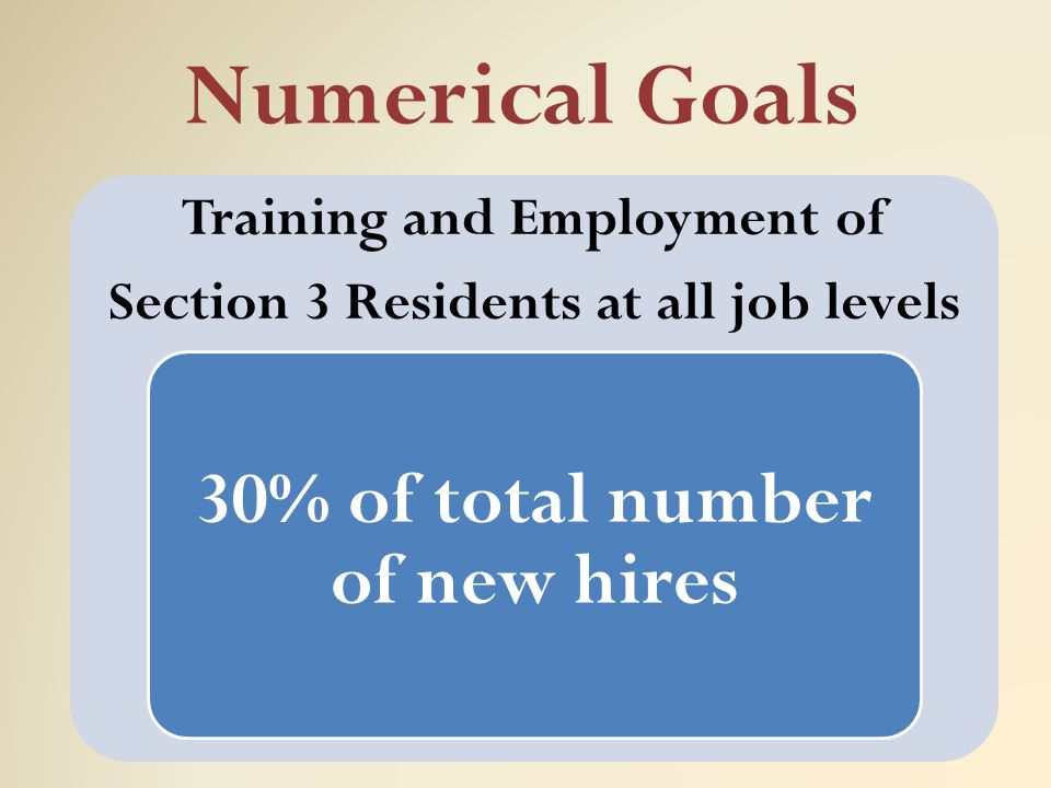 Numerical Goals 30% of total number of new hires