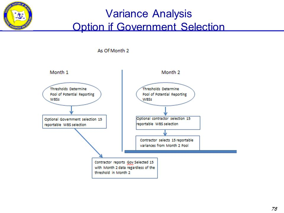 Variance Analysis Option if Government Selection