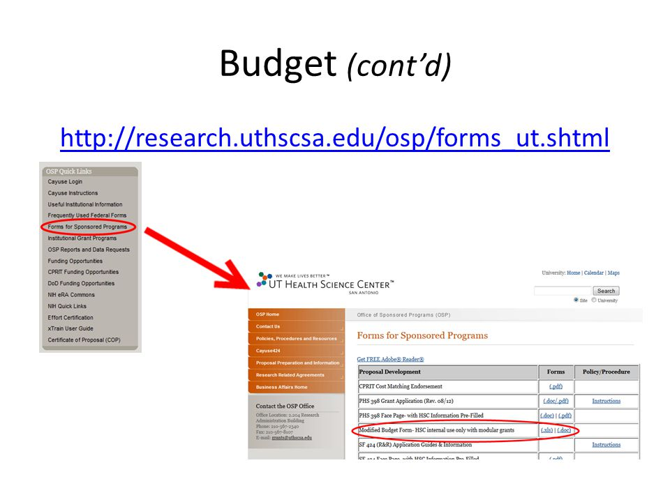 Budget (cont'd) http://research.uthscsa.edu/osp/forms_ut.shtml