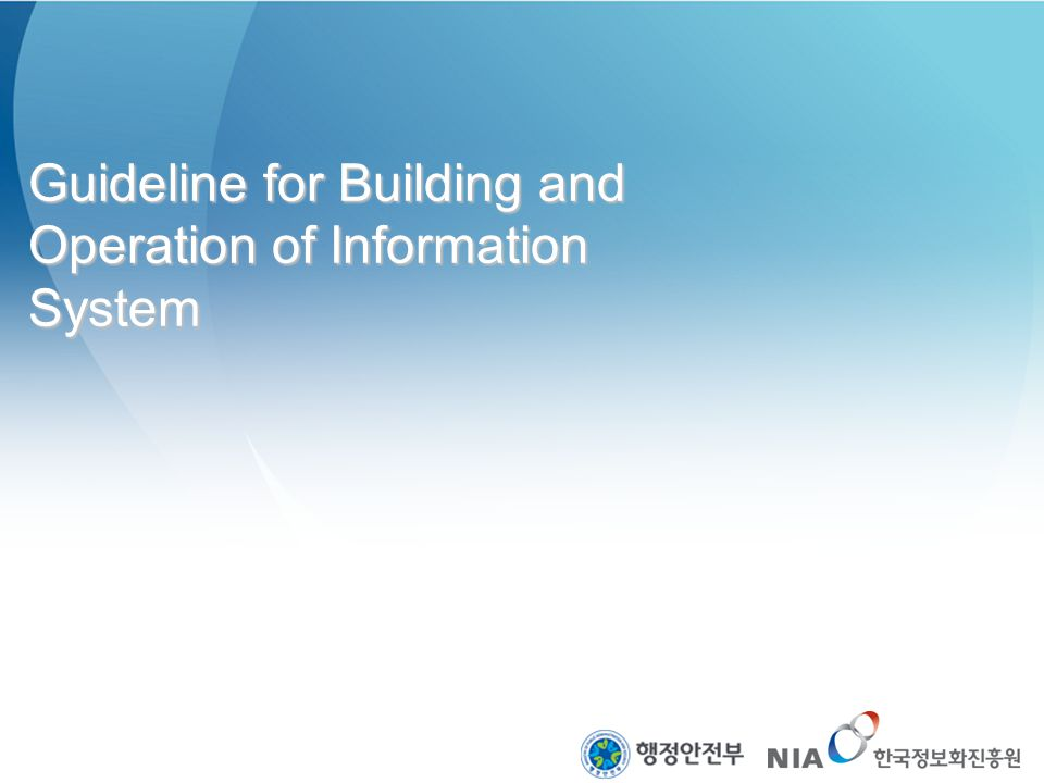 Guideline for Building and Operation of Information System
