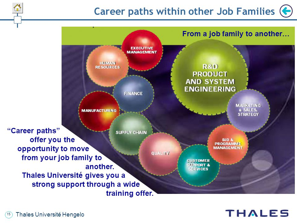 Career paths within other Job Families