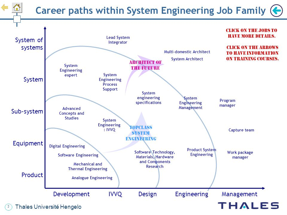 Career paths within System Engineering Job Family