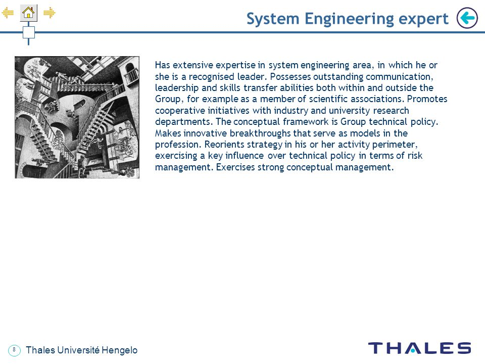 System Engineering expert