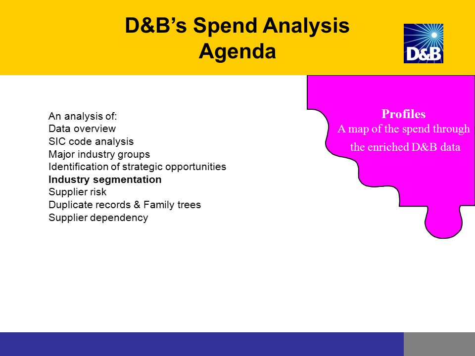 D&B's Spend Analysis Agenda