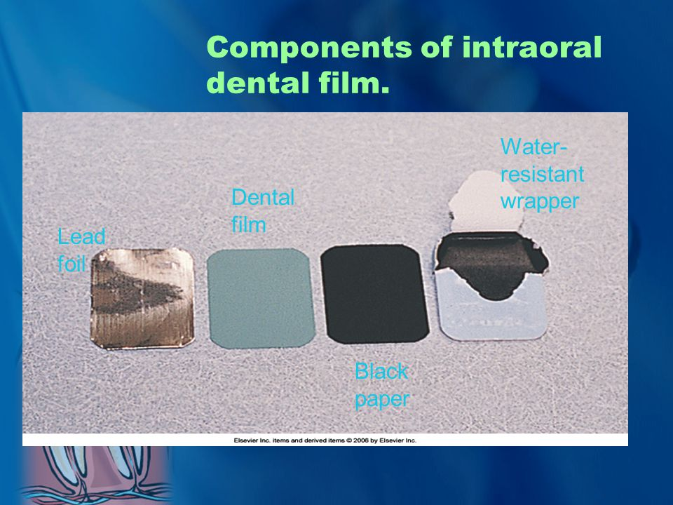 Components of intraoral dental film.