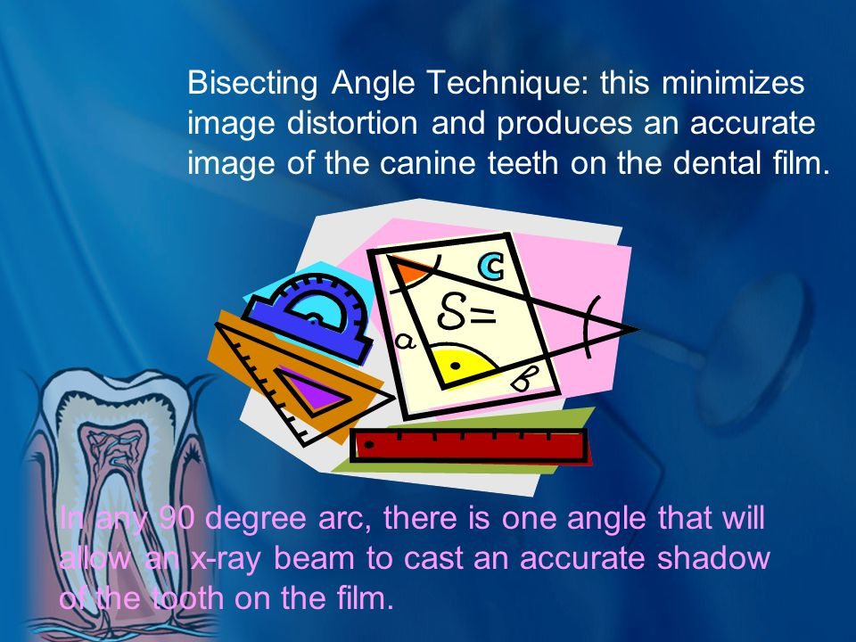 Bisecting Angle Technique: this minimizes image distortion and produces an accurate image of the canine teeth on the dental film.