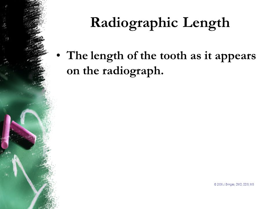 Radiographic Length The length of the tooth as it appears on the radiograph.