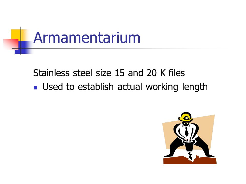 Armamentarium Stainless steel size 15 and 20 K files