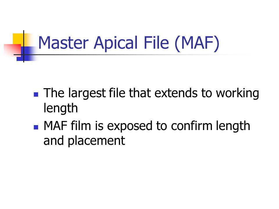 Master Apical File (MAF)