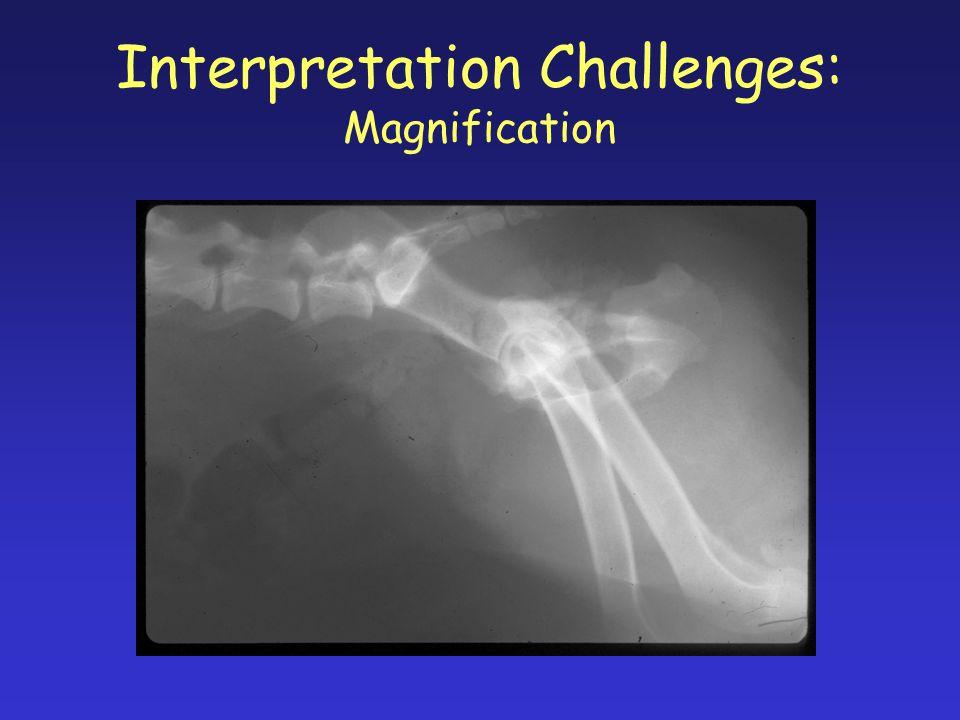 Interpretation Challenges: Magnification