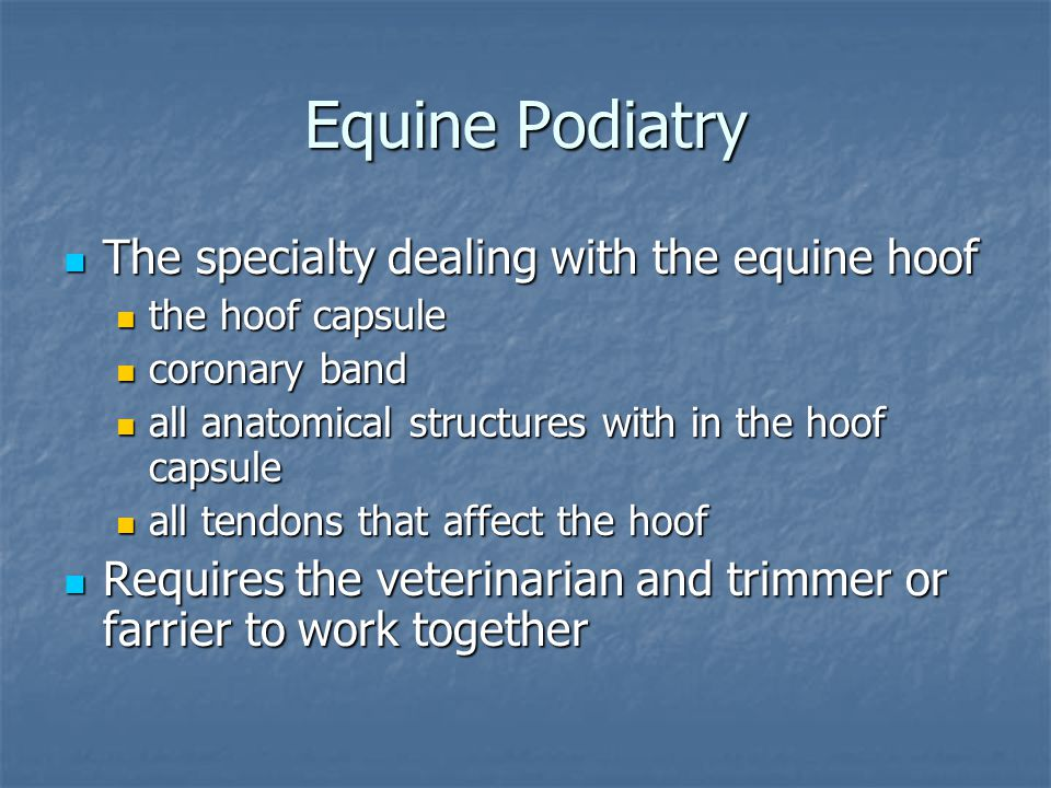 Equine Podiatry The specialty dealing with the equine hoof