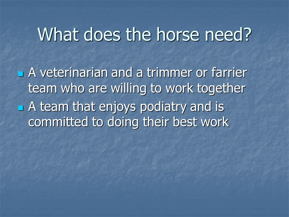 What does the horse need
