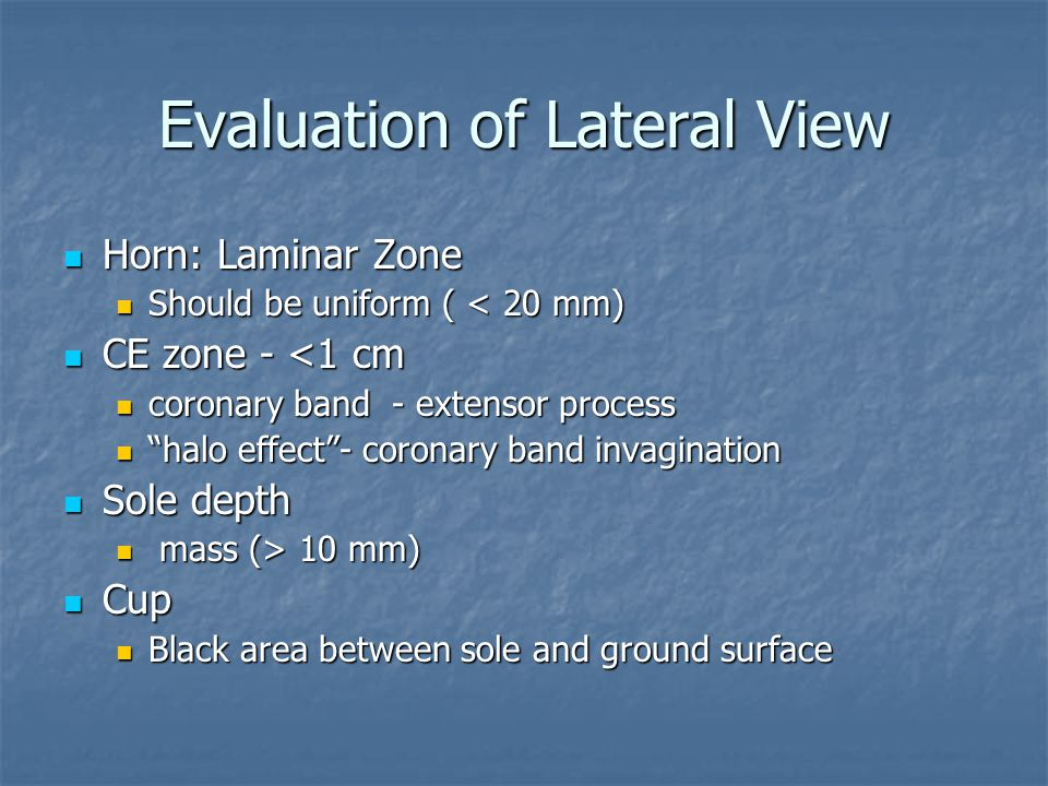 Evaluation of Lateral View