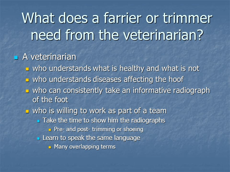 What does a farrier or trimmer need from the veterinarian
